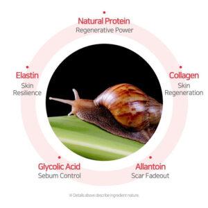 snail mucin analysis